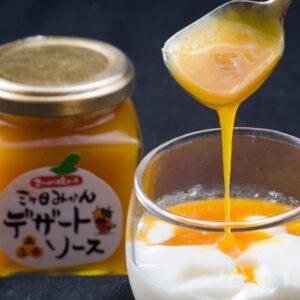 【14】三ヶ日みかん(青島品種)デザートソース 140g